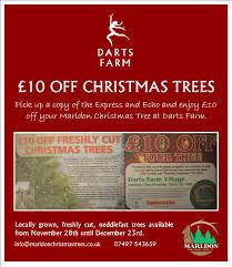 marldon christmas trees december 22 2015 darts farm local
