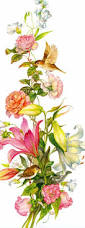 436 best flowers images on pinterest flowers art flowers and