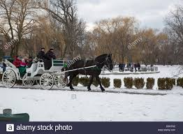 detroit michigan and carriage rides were offered during