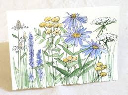 painted cards for sale original one of a painted watercolor illustration nature