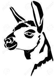 llama clipart head pencil and in color llama clipart head