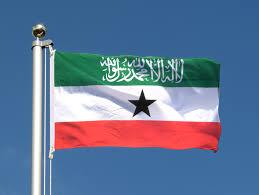 Flag Law Somaliland Passes First Law Against U2013 Goobjoog News