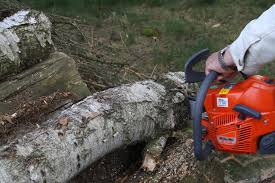 chainsaw diy forums
