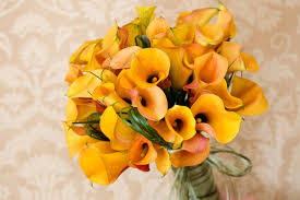 calla bouquets flowers by erin mini calla bouquets