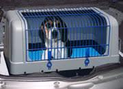 porta cani per auto alcune regole per il trasporto