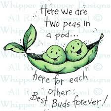 2 peas in a pod two peas in a pod friendship rubber sts