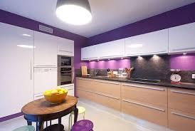 Purple Kitchen Cabinets Modern Kitchen Color Schemes 12 Best Kitchen Images On Pinterest Purple Walls Purple Kitchen