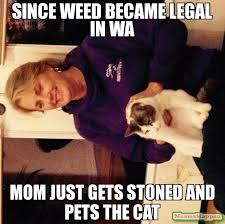 Stoned Dogs Meme - since weed became legal in wa mom just gets stoned and pets the cat meme