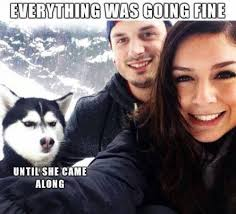Everything Is Fine Meme - everything was going fine until she showed up crazy dog death