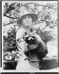 thanksgiving history com the thanksgiving raccoon that became a presidential pet history