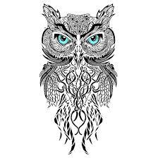 best 25 owl design ideas on owl sketch owl best 25 owl design