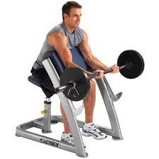 cybex scott curl gym source