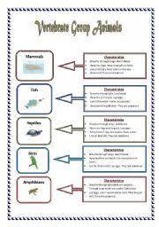 free printable worksheets vertebrates invertebrates vertebrates and invertebrates worksheet pdf worksheets for all
