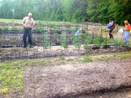 the gardener u0027s dirt may 2015 north carolina cooperative extension