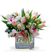 tulip arrangements tulips flower tulip arrangements glenview florist