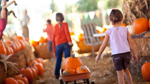 Thanksgiving In Toronto Fun Things To Do With Kids In Toronto This Month October 2017
