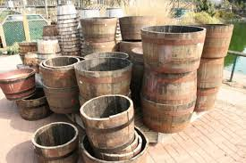 Half Barrel Planters by Growing Potatoes In A Barrel Survival Monkey Forums