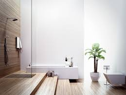 Spa Type Bathrooms - how you can update your bathroom to give it a spa like vibe