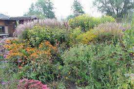 native plants in pennsylvania save the pollinators it u0027s not as simple as