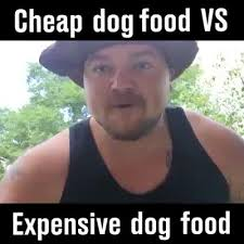 Dog Food Meme - dog food 9gag