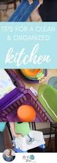 cleaning tips for kitchen 15 best cleaning tips images on pinterest cleaning tips