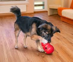 amazon com kong wobbler treat dispensing dog toy large pet