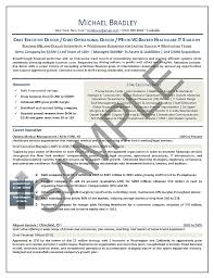 Sample Resume Of Ceo Ceo Resume Samples Executive Resume Writing Mary Elizabeth