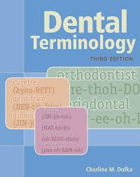 dental terminology 3rd edition 9781133019718 cengage