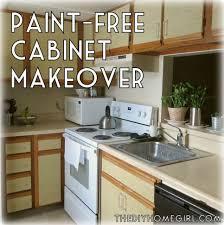 Diy Kitchen Furniture Kitchen Cabinet Makeover Diy Kitchen Cabinet Makeover Picturesque