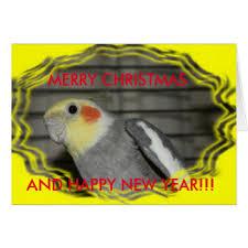 cockatiel greeting cards zazzle co uk