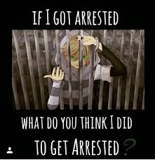 What Would You Do Meme - what do you think i did to get arrested meme by s lipping t
