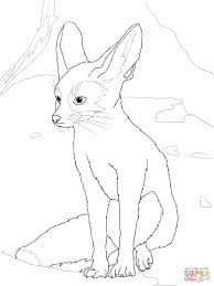 fennec fox coloring pages free coloring pages