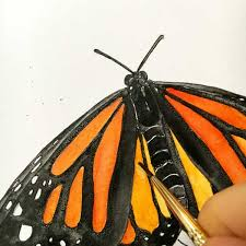 how to draw and paint a butterfly by pam ash designs