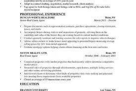 Sample Resume For Real Estate Agent by Real Estate Salesperson Resume Sample Reentrycorps