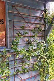 Climbing Plant Supports - 55 best plant supports images on pinterest plant supports