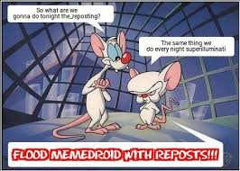 Pinky And The Brain Meme - the best pinky and the brain meme memes memedroid