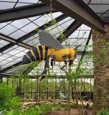 giant lego sculptures take over huntsville botanical garden whnt com