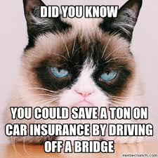 Pet Insurance Meme - 20 hilarious insurance memes thinkadvisor