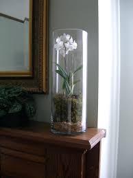 Large Glass Vases Wholesale Round Clear Glass Vases U2013 Carolinemeyersphotography Com