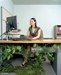 office worker sitting at desk with plants growing on it stock