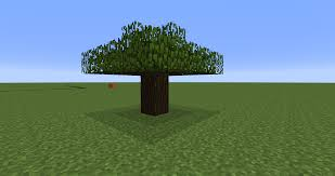 allow oak trees to grow by planting a single sapling a small