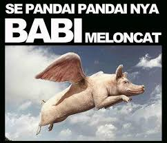 Meme Babi - lucky hakim pamer ayam bugil dan babi terbang ahoker berang