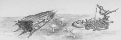 mushrooms dead fish pencil drawings sketches artwork