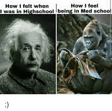 Med School Memes - how i feel how i felt when i was in highschool lbeing in med