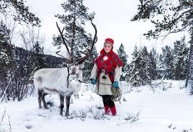 rudolph reindeer shed antlers