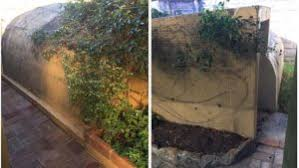 Backyard Bomb Shelter Photos There U0027s A Sydney House For Sale With A Bomb Shelter In The