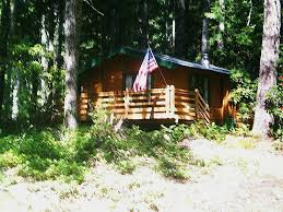 Tiny Cabin by 384 Sq Ft Tiny Cabin For Sale With Land