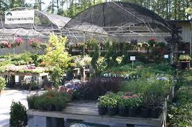 Raleigh Botanical Garden Norwood Road Garden Raleigh Garden Center Landscaping Services