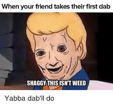 Dab Meme - when your friend takes their first dab shaggy this isntweed yabba