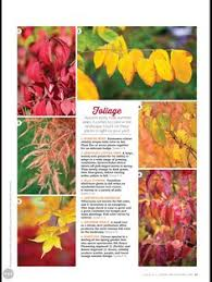 living country magazine plants fall grasses